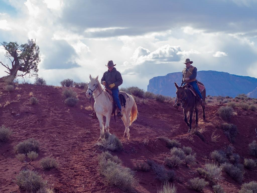 Infovelo.com---moab-vélo-de-montagne-Horse ride 3